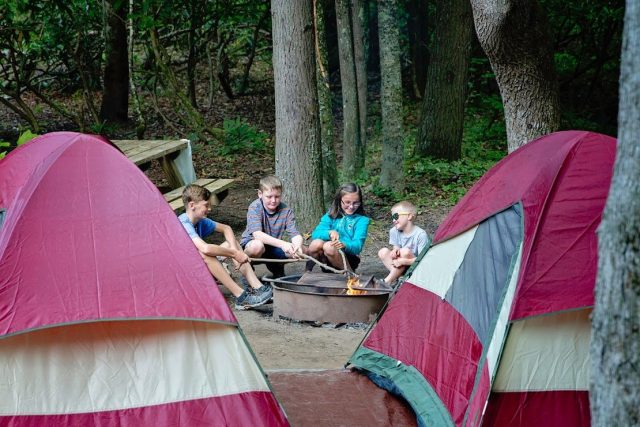 Don't miss out on your favorite camping spots! Make reservations now.