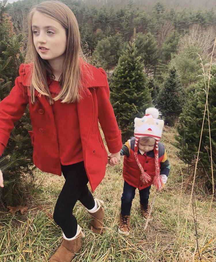 Festive Fir, Pine Tree Farm a Staple for Mercer County Holidays